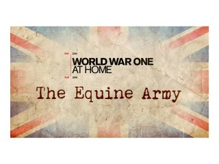 BBC World War 1 at Home, The Equine Army